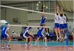 Сетка для волейбола (040640)
